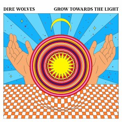 Dire Wolves - Spacetime Rider
